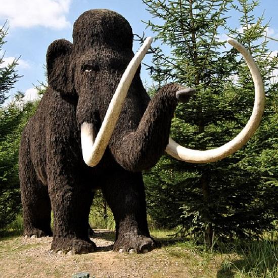 冰原歷險記「長毛象」活了!科學家:兩年內重返世界!