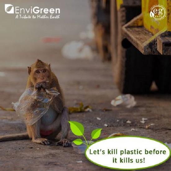 塑膠袋不再萬年不腐!新發明不只能分解還可吃下肚